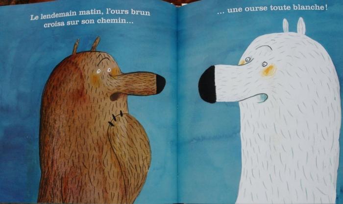 ours-brun-qui-voulait-blanc.jpg