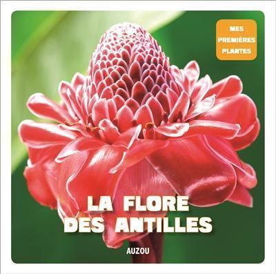 La flore des antilles