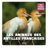 Les animaux des antilles françaises
