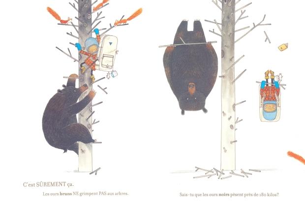 comment ne pas se faire manger par un ours 1